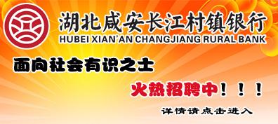 湖北咸安长江村镇银行2015年11月招聘公告